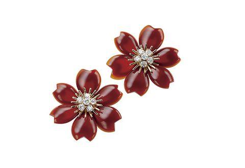 Brooch, Jewellery, Fashion accessory, Petal, Maroon, Flower, Earrings, Plant, Body jewelry, Gemstone,