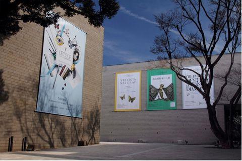Wall, Tree, Mural, Street art, Architecture, Art, Facade, Adaptation, Visual arts, Plant,