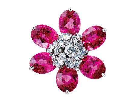 Violet, Purple, Magenta, Pink, Red, Lavender, Jewellery, Natural material, Maroon, Fashion accessory,