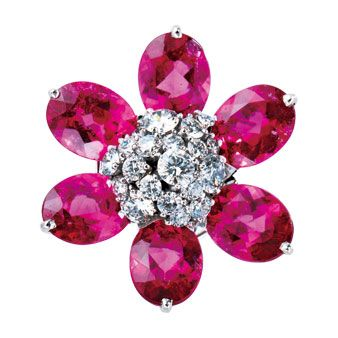 Violet, Purple, Magenta, Pink, Lavender, Jewellery, Natural material, Fashion accessory, Maroon, Body jewelry,