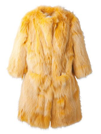 Brown, Yellow, Textile, Carnivore, Dog, Liver, Fawn, Fur, Beige, Tan,