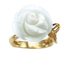 Metal, Brass, Garden roses, Flowering plant, Rose, Still life photography, Artificial flower, Rose order, Silver, Rose family,