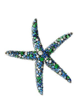 Organism, Line, Teal, Symbol, Turquoise, Electric blue, Azure, Aqua, Echinoderm, Star,