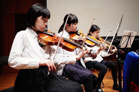 Violist, Musical instrument, Violin, Violinist, Viola, Music, String instrument, String instrument, Violin family, Bowed string instrument,