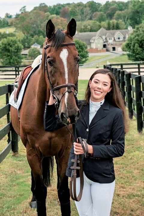 Horse, Halter, Bridle, Mammal, Vertebrate, Rein, Horse tack, Horse supplies, Equestrianism, Mare,