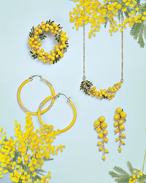 Yellow, Font, Plant, Flower, Fashion accessory,