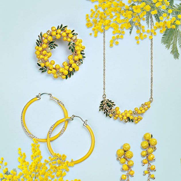 Yellow, Font, Plant, Flower, Fashion accessory, Goldenrod, Mimosa,