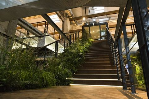 Stairs, Architecture, Building, House, Room, Tree, Handrail, Daylighting, Floor, Plant,