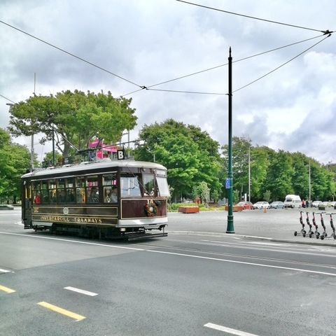 Transport, Mode of transport, Tram, Vehicle, Bus, Lane, Cable car, Public transport, Street, Trolleybus,