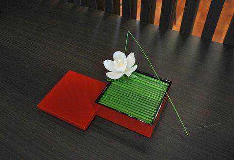 Art paper, Paper, Plant, Floral design, Flower,