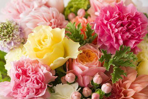 Flower, Flowering plant, Bouquet, Cut flowers, Pink, Plant, Petal, Artificial flower, Flower Arranging, Floral design,