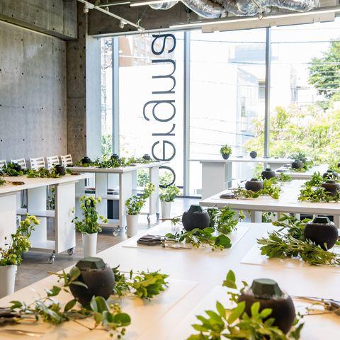 Houseplant, Green, Flowerpot, Botany, Plant, Building, Interior design, Architecture, Floral design, Flower,