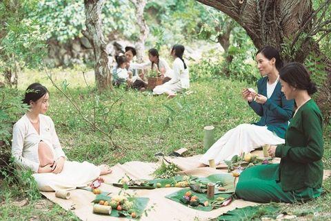 Adaptation, Picnic, Tree, Grass, Recreation, Plant, Tourism, Forest,