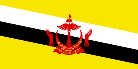 Flag, Red, Illustration, Red flag, Graphic design,