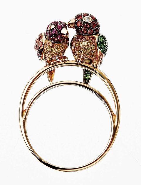 Jewellery, Amber, Bird, Ring, Metal, Engagement ring, Pre-engagement ring, Body jewelry, Bird of prey, Gemstone,