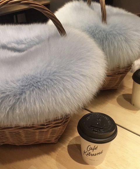 Basket, Fur, Footwear, Shoe, Feather,