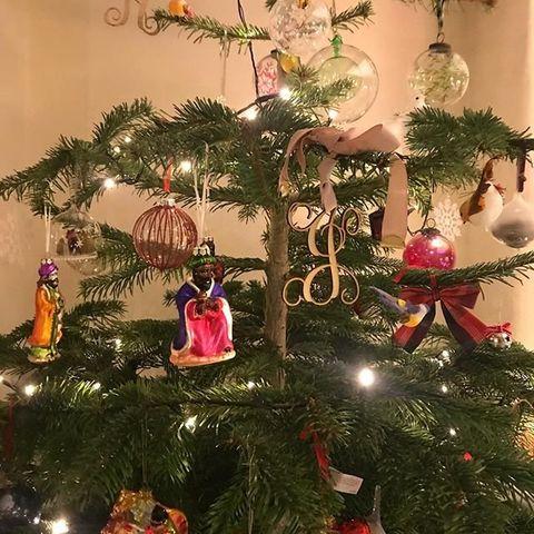Christmas ornament, Christmas, Christmas tree, Christmas decoration, Tree, Holiday ornament, Christmas eve, Fir, Spruce, Ornament,