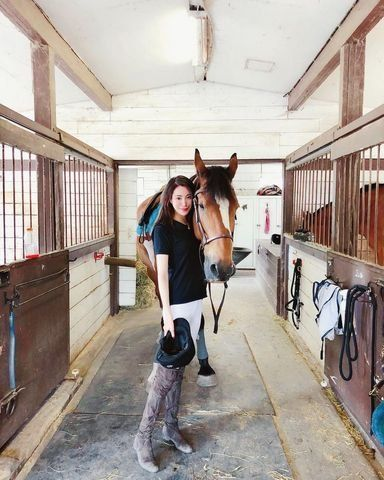 Horse, Stable, Horse supplies, Horse tack, Horse grooming, Bridle, Horse trainer, Mare, Riding instructor, Mane,