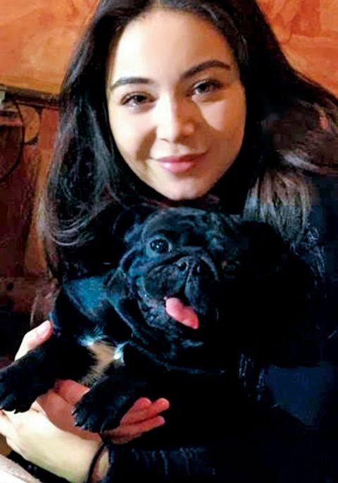 Dog, Canidae, Pug, Dog breed, Companion dog, Snout, Black hair, Fawn, Carnivore, Photography,