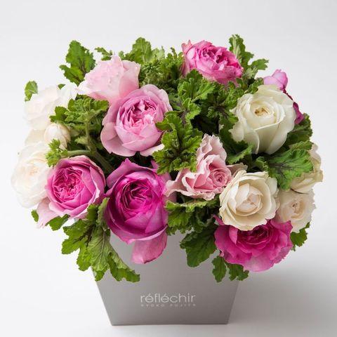 Flower, Flowering plant, Rose, Bouquet, Plant, Garden roses, Cut flowers, Pink, Rose family, Floribunda,