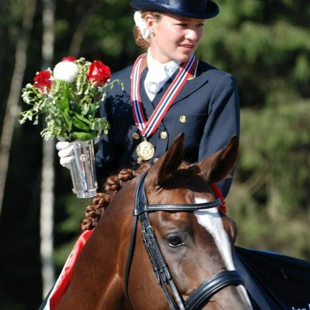 Horse, Halter, Bridle, Rein, Horse tack, Mammal, Animal sports, Outdoor recreation, Recreation, Equestrianism,