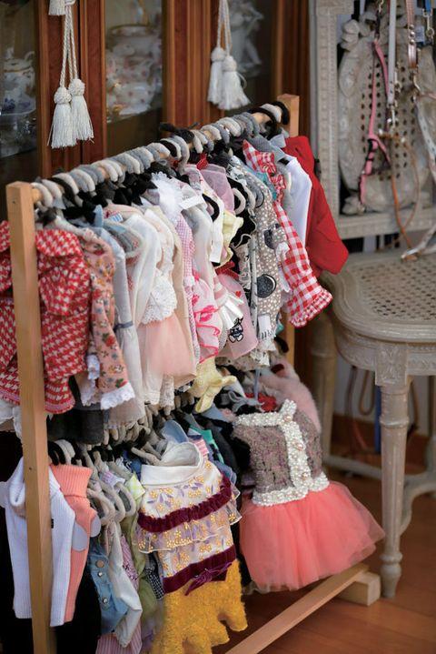 Boutique, Room, Textile, Closet, Clothes hanger, Wardrobe,