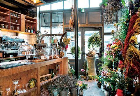 Floristry, Building, Houseplant, Plant, Interior design, Floral design, Flower, Tourism,