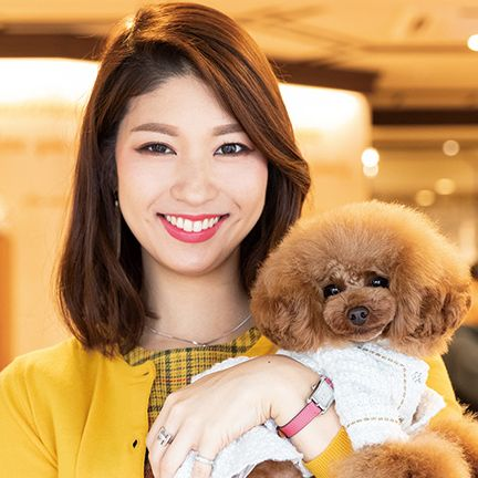 Dog, Canidae, Companion dog, Toy Poodle, Skin, Dog breed, Maltepoo, Puppy love, Smile, Miniature Poodle,