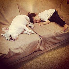 Comfort, Room, Mammal, Linens, Bedding, Sleep, Carnivore, Bed sheet, Felidae, Small to medium-sized cats,