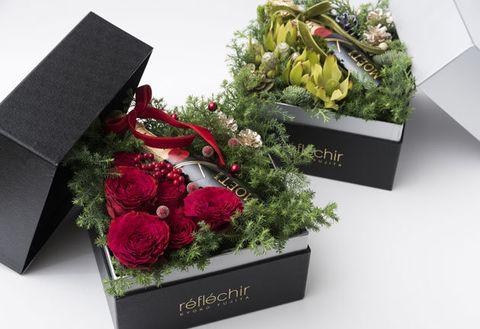 Grave, Flower, Floristry, Headstone, Plant, Flowerpot, Cut flowers, Flower Arranging, Bouquet, Floral design,