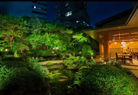 Green, Nature, Night, Vegetation, Lighting, Light, Sky, Architecture, Tree, Botany,