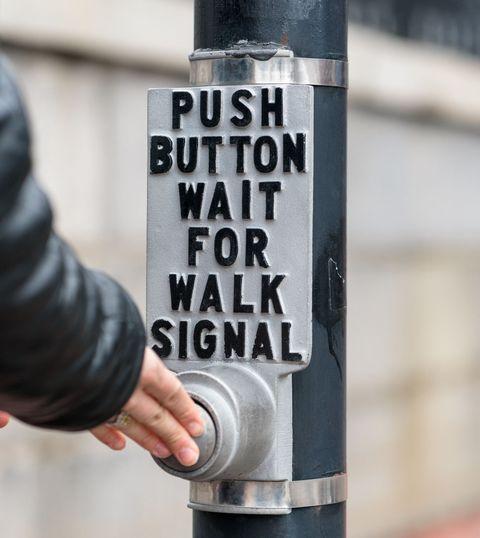 Text, Font, Tree, Hand, Art, Sticker, Road, Signage,