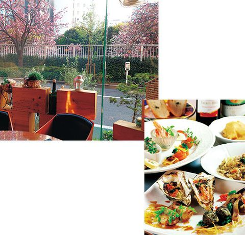 Cuisine, Food, Dish, Meal, Dishware, Recipe, Tableware, Garnish, Brunch, Culinary art,