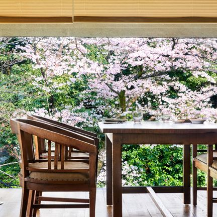 Table, Furniture, Room, Property, House, Interior design, Tree, Home, Window, Kitchen & dining room table,
