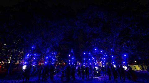 Night, Blue, Light, Lighting, Sky, Performance, Event, Tree, Crowd, Darkness,