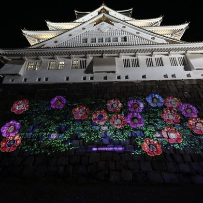 Architecture, Chinese architecture, Building, Night, Plant, Flower, Place of worship, Japanese architecture, House,