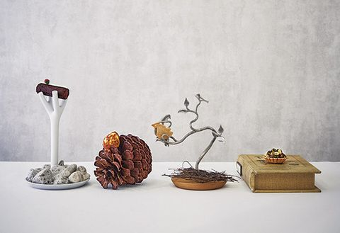 Still life photography, Still life, Table, Plant, Illustration,