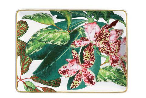 Botany, Flower, Plant, Plate, Anthurium, Pattern, Serveware, Tableware,
