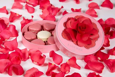 Petal, Pink, Red, Garden roses, Flower, Rose, Artificial flower, Valentine's day, Plant, Cut flowers,