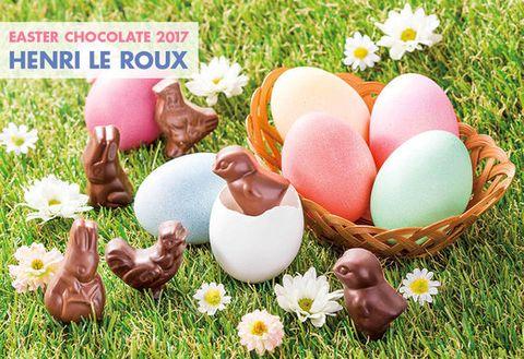 Egg, Egg, Easter, Grass, Easter egg, Spring, Food, Event,