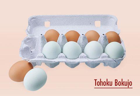Egg, Egg, Egg cup, Food, Egg white, Serveware,