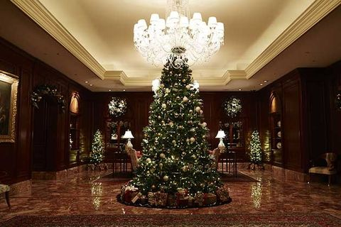 Christmas tree, Tree, Christmas decoration, Christmas, Property, Lighting, Room, Interior design, Light fixture, Architecture,