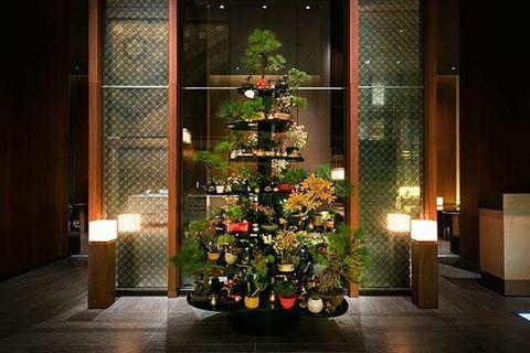 Lighting, Christmas decoration, Christmas tree, Interior design, Room, Interior design, Holiday, Christmas ornament, Christmas eve, Christmas,