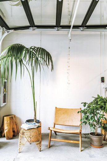 Furniture, Room, Interior design, House, Tree, Ceiling, Houseplant, Home, Plant, Chair,