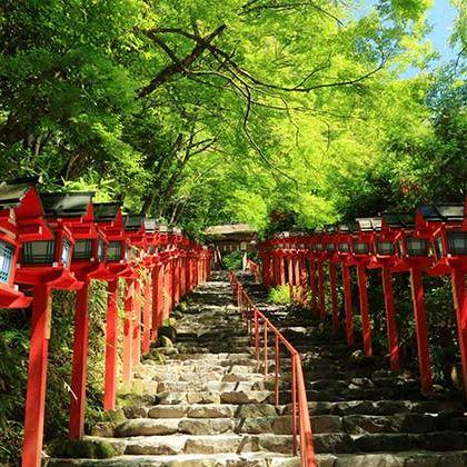 Red, Shinto shrine, Temple, Place of worship, Shrine, Torii, Botany, Tree, Plant, Architecture,