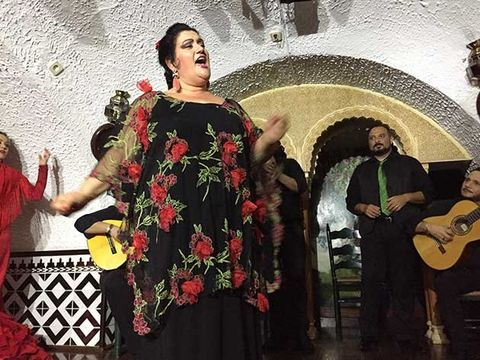 Flamenco, Event, Tradition, Performance, Formal wear, Art,