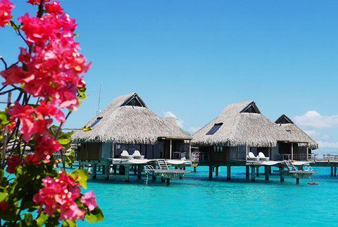 Vacation, Resort, Tropics, Lagoon, Sky, Tourism, Tree, Travel, Leisure, Caribbean,