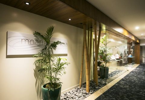 Houseplant, Interior design, Wall, Tree, Plant, Lobby, Room, Design, Ceiling, Architecture,