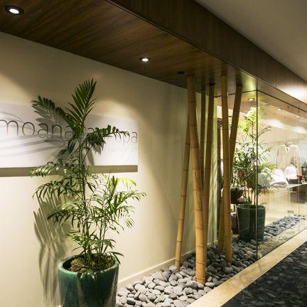 Houseplant, Interior design, Wall, Tree, Lobby, Room, Plant, Architecture, Design, Building,