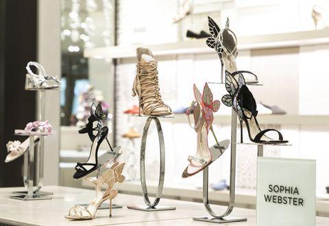 Skeleton, Display window, Sculpture, Museum, Art,
